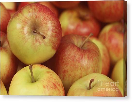 Delicious Apple Fruit Background Canvas Print
