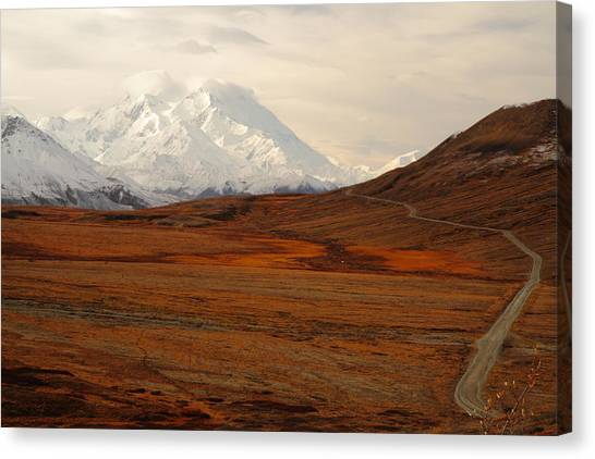 Denali And Tundra In Autumn Canvas Print