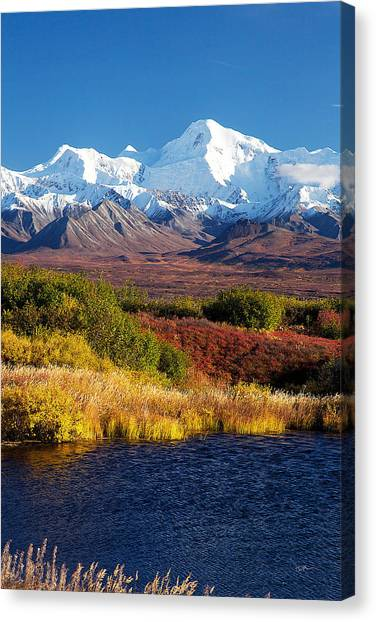 Denali Canvas Print - Denali Autumn by Ed Boudreau