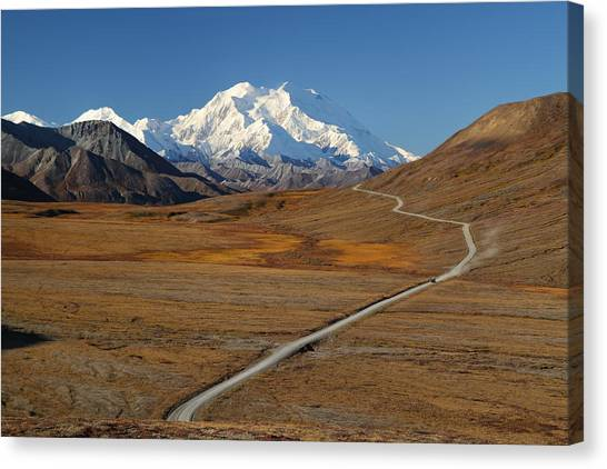 Denali Is Out Canvas Print