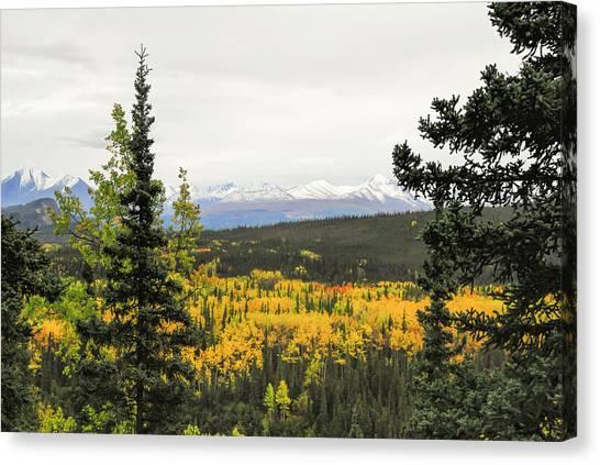 Denali National Park Landscape Canvas Print