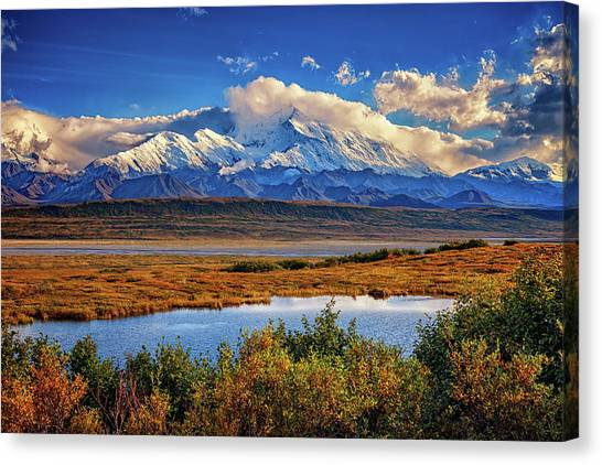 Denali, The High One Canvas Print