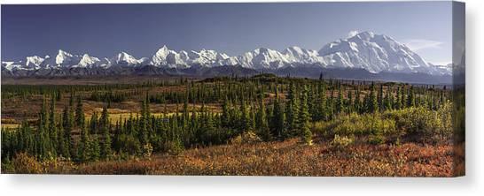 Tundras Canvas Print - Denali Tundra by Ed Boudreau