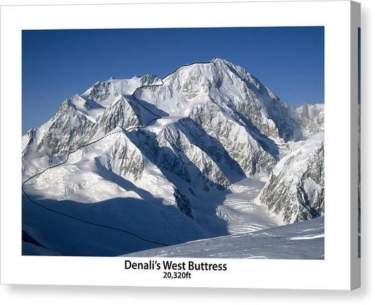 Denali Canvas Print - Denali West Buttress by Alasdair Turner