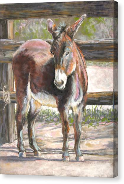 Deo Doro Canvas Print by Carole Haslock