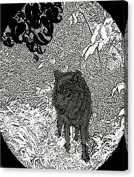 Fun Run Canvas Print - Depth Of The Forest by Debra     Vatalaro