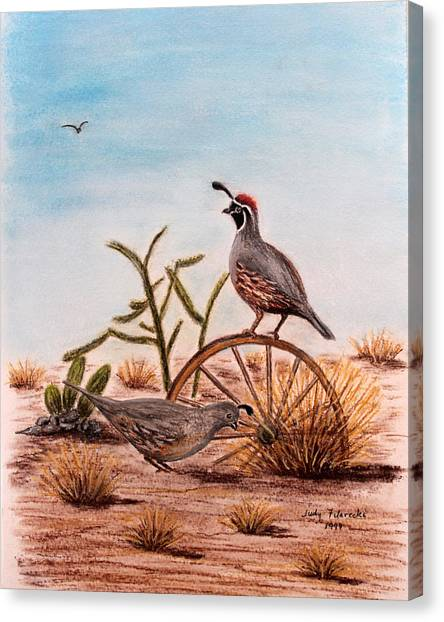 Desert Art Gambels Quail Canvas Print