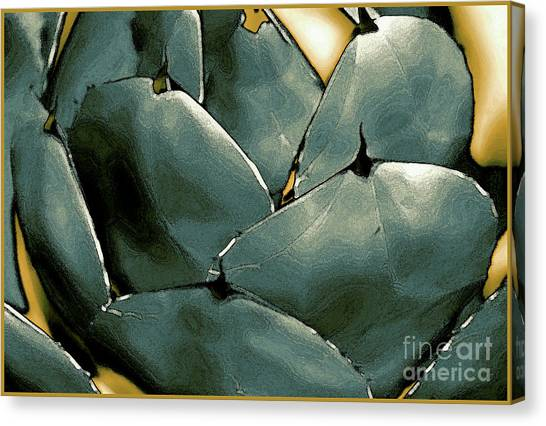 Desert Botanical 2  Canvas Print by Linda  Parker