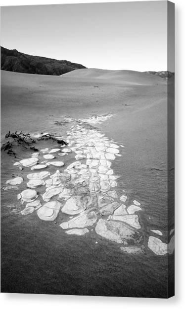 Desert Dune Landscape Canvas Print
