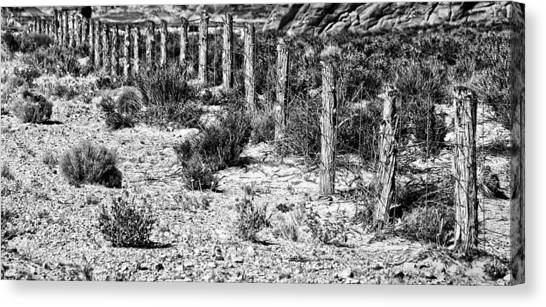 Desert Fence Canvas Print