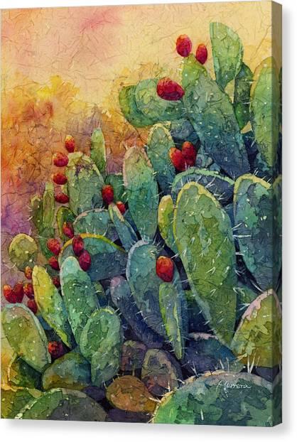 Desert Gems 2 Canvas Print