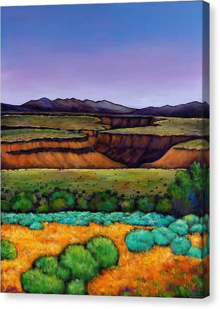 Mexican Canvas Print - Desert Gorge by Johnathan Harris