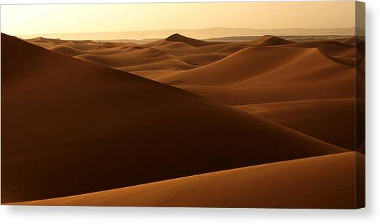 Desert Impression Canvas Print by PIXELS  XPOSED Ralph A Ledergerber Photography