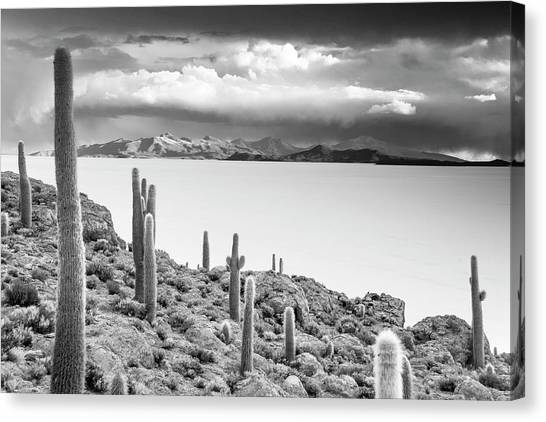 Bolivian Canvas Print - Desert Isle by Aaron Bedell