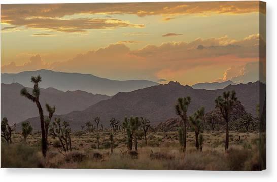 Desert Magic Canvas Print