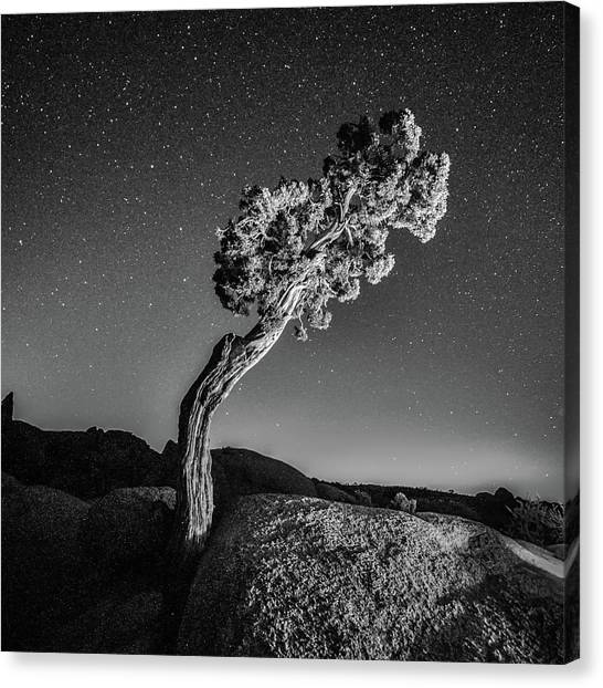Black Rock Desert Canvas Print - Causality V by Ryan Weddle