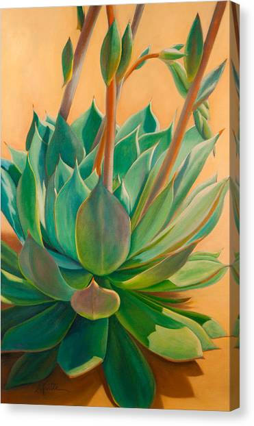 Plants Canvas Print - Desert Rainbow by Athena Mantle Owen