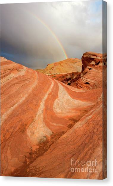 Valley Of Fire Canvas Print - Desert Rainbow by Mike Dawson