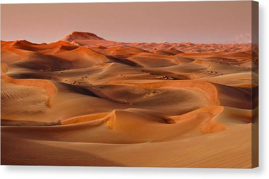 Arabian Desert Canvas Print - Desert Sands by Mick House
