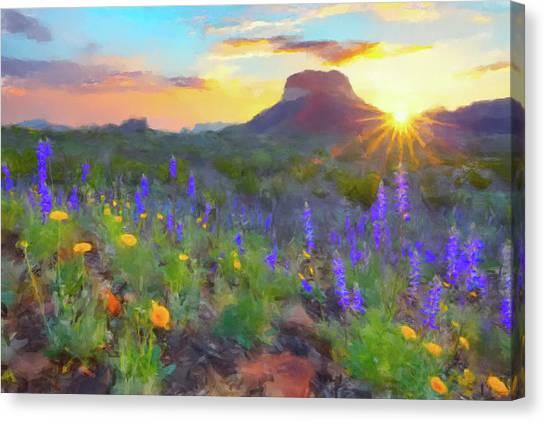 Desert Sunsets Canvas Print - Desert Sunset by Gary Grayson