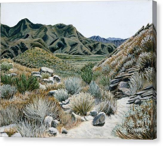 Desert Trail Canvas Print by Jiji Lee
