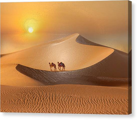 Arabian Desert Canvas Print - Desert Turtle by Scott Mendell