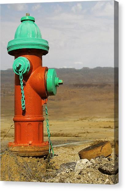 Desert Water Canvas Print