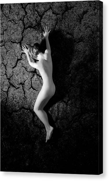 Desire No.6 Canvas Print