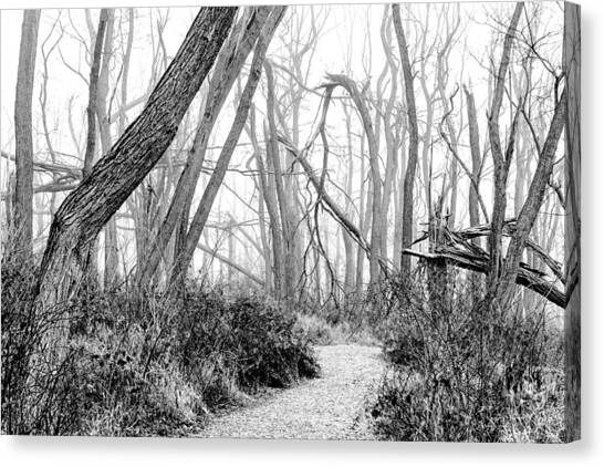 Destruction In Black And White Canvas Print