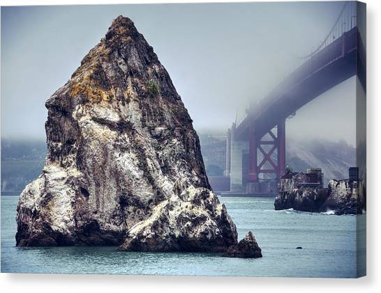Determined To Rout Her Way Out Of This Fog Canvas Print