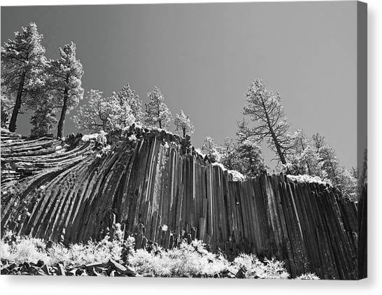 Devil's Postpile - Frozen Columns Of Lava Canvas Print