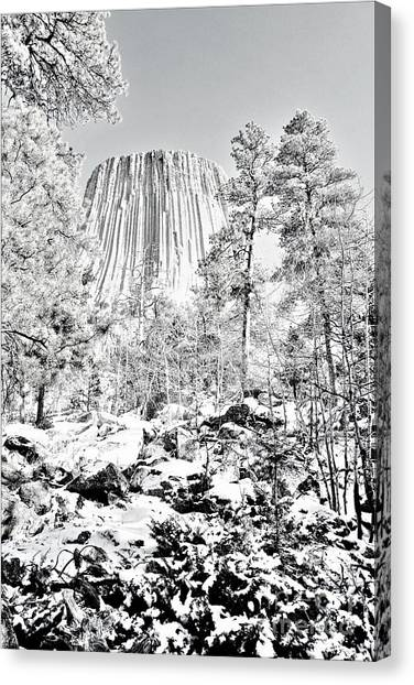Devils Tower Wyoming Canvas Print