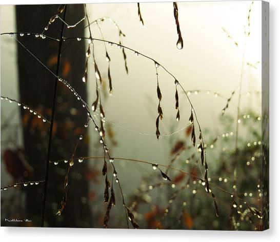 Dew Drop Garland Canvas Print