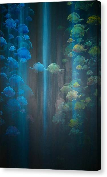 Dialogue II Canvas Print by Ana Bikic