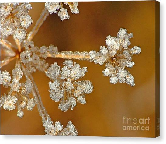 Diamond Ice Canvas Print