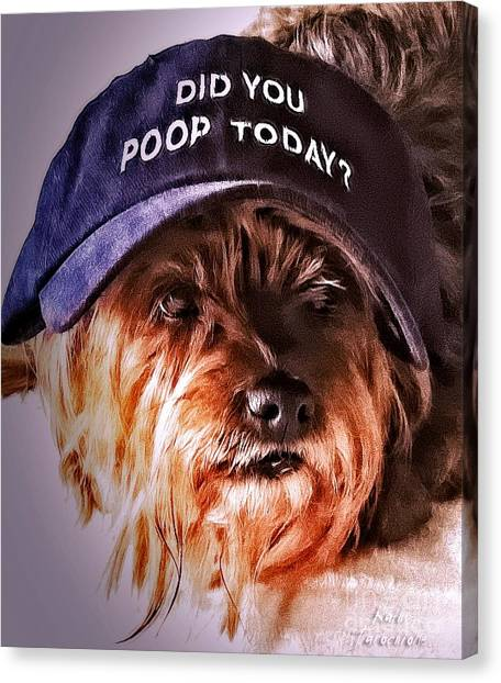 Did You Poop Today Canvas Print