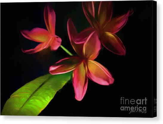Digitized Sunset Plumerias #2 Canvas Print