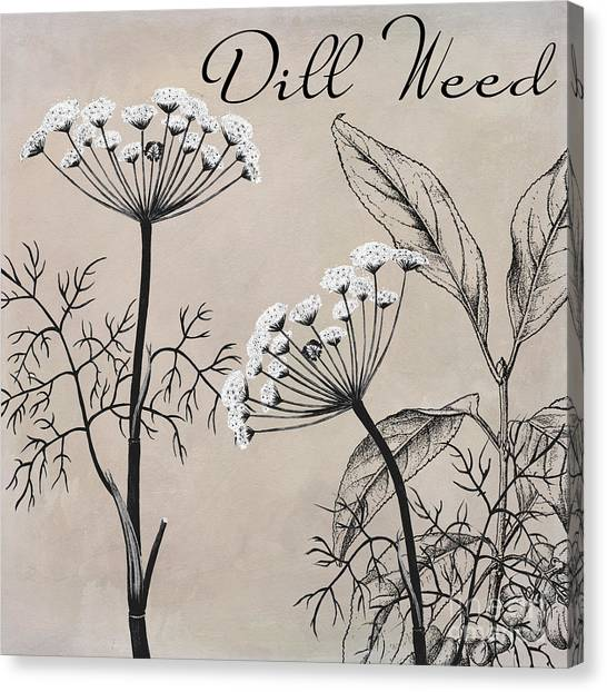 Dinner Table Canvas Print - Dill Weed Flowering Herb by Mindy Sommers