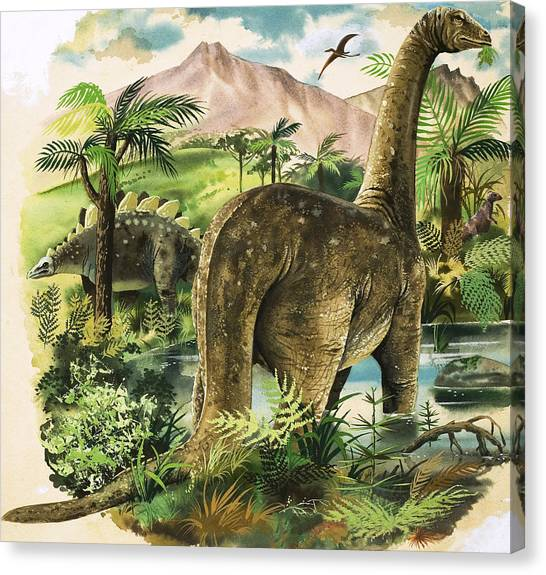 Pterodactyls Canvas Print - Dinosaurs by English School