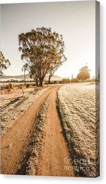 Offroading Canvas Print - Dirt Frosted Country Road In Winter by Jorgo Photography - Wall Art Gallery