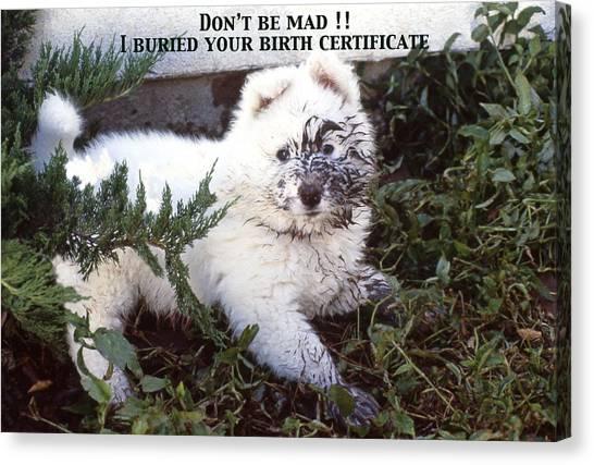 Dirty Dog Birthday Card Canvas Print