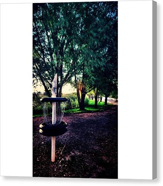 Disc Golf Canvas Print - #disc #golf At #olathe #colorado #park by Ron Meiners