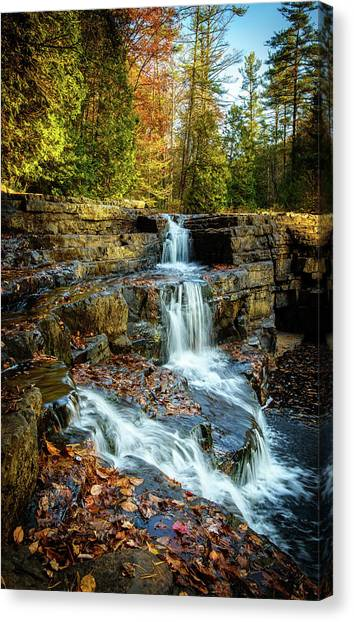 Dismal Falls #3 Canvas Print