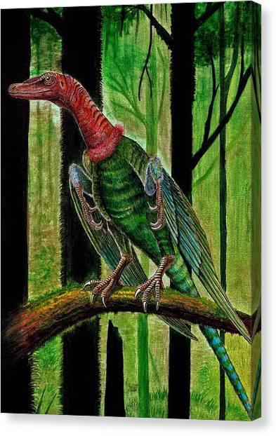 Display - Rahonavis Ostromi Canvas Print by Mihai Dumbrava