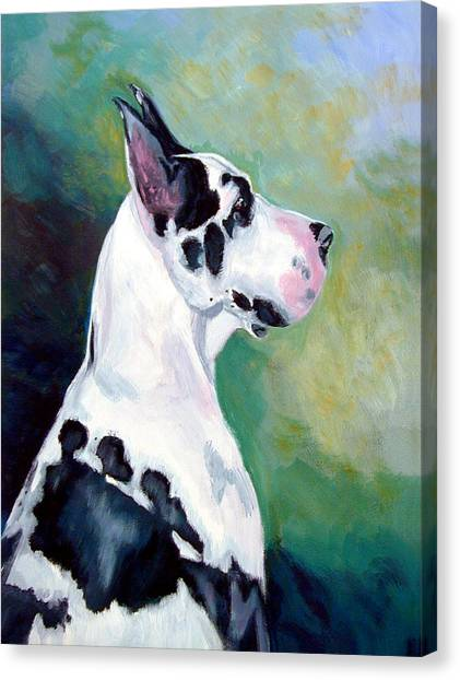 Great Danes Canvas Print - Diva The Great Dane by Lyn Cook