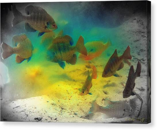 Dive Buddies Canvas Print
