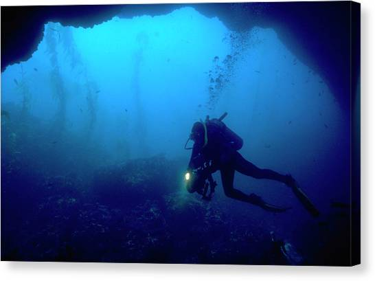 Underwater Caves Canvas Print - Diver In Cave by Brian Puyear