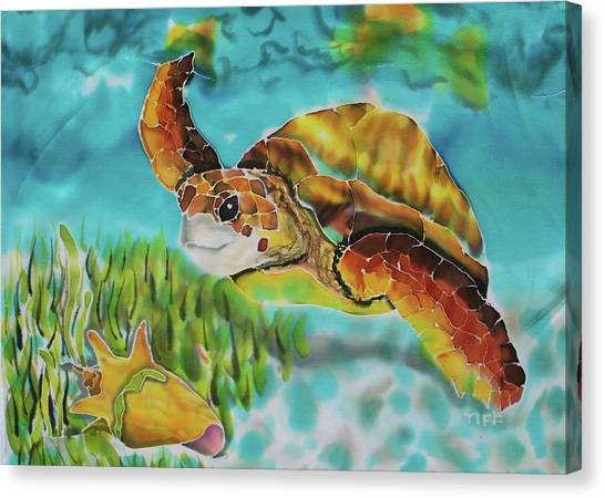 Diving Conch Canvas Print