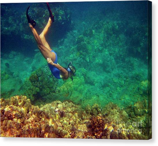 Diving For Shells Canvas Print