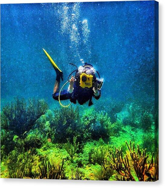 Scuba Diving Canvas Print - Diving In Riviera Maya by Nick Heap